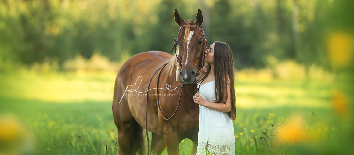 Portrait Session Wih Horse